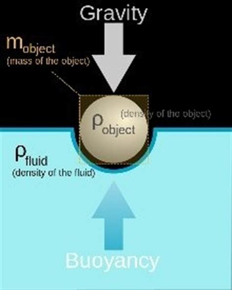 what is the meaning of buoyancy? quora