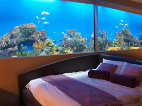 Hotels With Aquariums In The Room by Aquarium Room Picture Of Hotel H2o Manila Tripadvisor