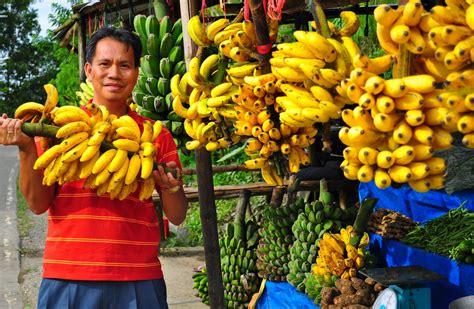 alimenti con molto potassio alimenti che contengono potassio la banana non 232 la