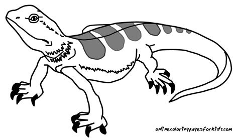 lizard coloring pages to print 13 lizard coloring pages printable print color craft