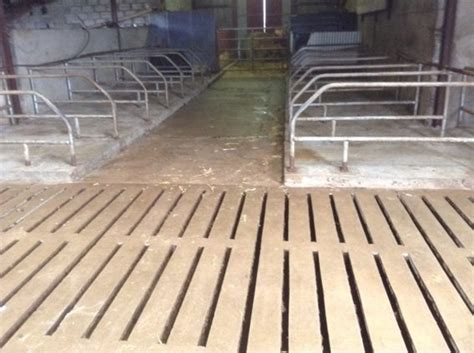slatted shed power washed for sale in mullagh clare from