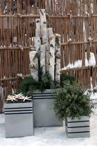 Winter Front Door Decorating Ideas - container plantings for wintry settings fine gardening