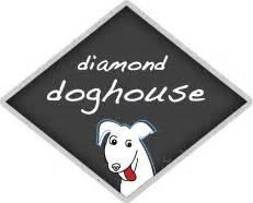 diamond dog house dog daycare pet boarding grooming richmond va 8042544101