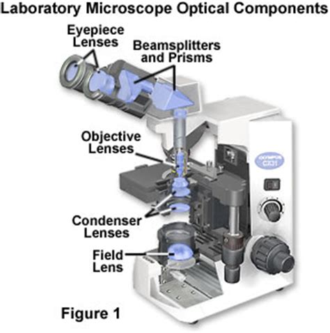 molecular expressions microscopy primer: physics of light