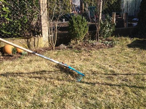 Rasenpflege Im Winter by Rasenpflege Im Fr 252 Hjahr Tipps Zum Vertikutieren D 252 Ngen