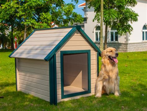 house dogs large dog house large dog houses free ship no tax