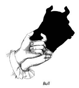 seni membuat bayangan tangan berbagai bentuk