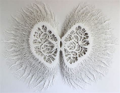 design art form intricate organic forms cut from paper by rogan brown