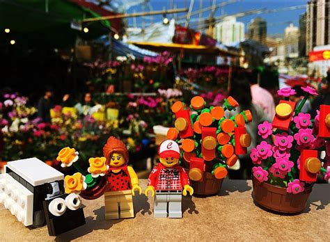 hong kong new year flower market 2015 the 7 stages of new year in hong kong