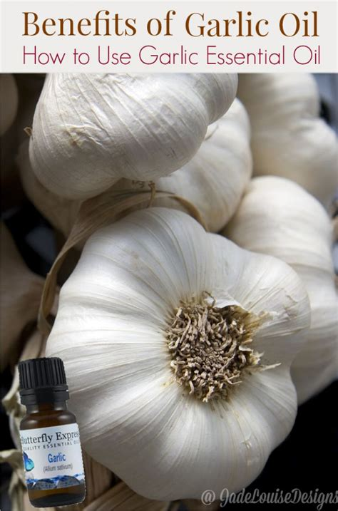 Garlic Detox Benefits by The Numerous Benefits Of Garlic And How To Use Garlic