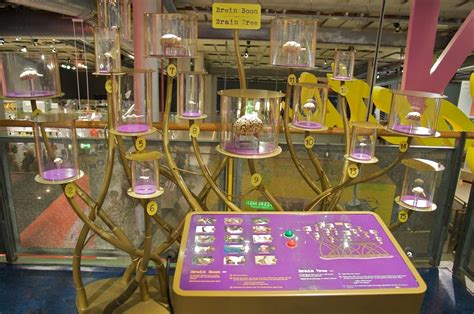 amsterdam museum technology science center nemo uncover the secrets of life and