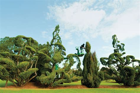 peace love and topiary american craft council