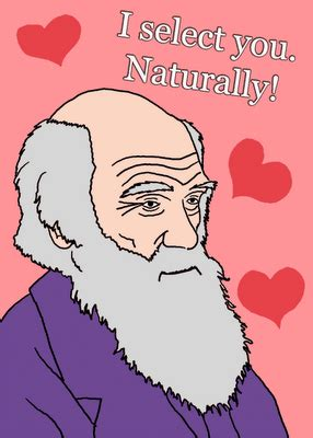science valentines cards happy darwin day science storiented