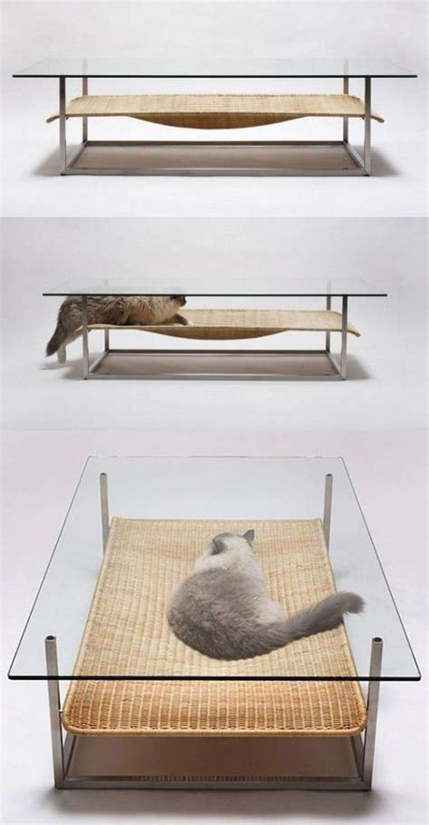 Cat Coffee Table Coffee Table And Cat Bed In One Ahahaha Sitting With Friends Drinks And Suddenly The Cat