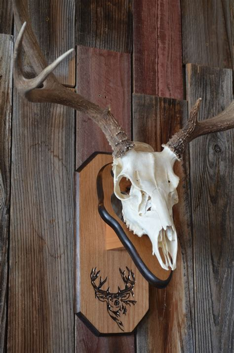 deer patterns and wood wall design on pinterest 17 best images about deer mounts on pinterest deer