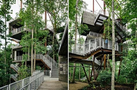 tree houses in virginia mithun erects the sustainability tree house in the dense forest of west virginia