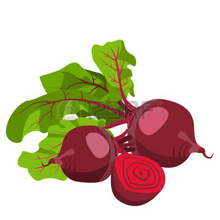beet color beet clipart beetroot pencil and in color beet clipart
