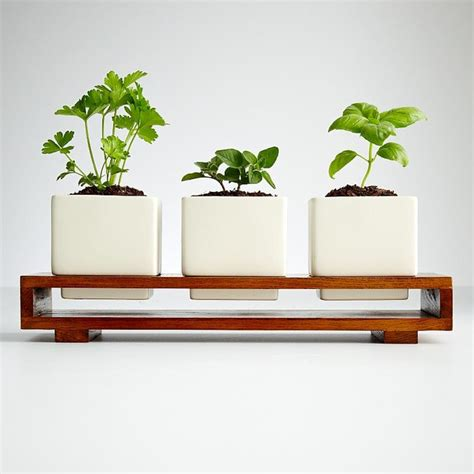 indoor modern planters culinary herb growing kit modern indoor pots and