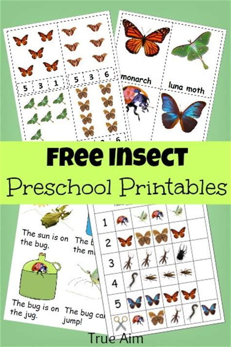 pattern bugs activities free preschool printables insect mini pack true aim