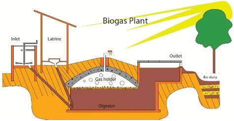 design of a household human waste bioreactor