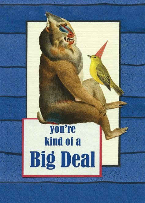 Where To Buy Big 5 Gift Card - 184 big deal little bird cards