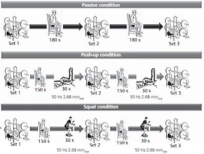 sex positions on a bench increase your bench with a vibrator 30s in the squat