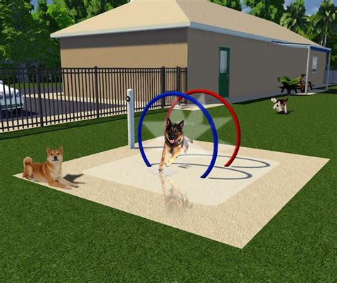 dog backyard play equipment best 25 dog friendly backyard ideas on pinterest diy