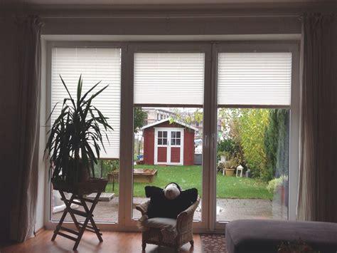 Sichtschutz Fenster Hund by Sichtschutz Plissees F 252 R T 252 Ren Und Fenster Vom