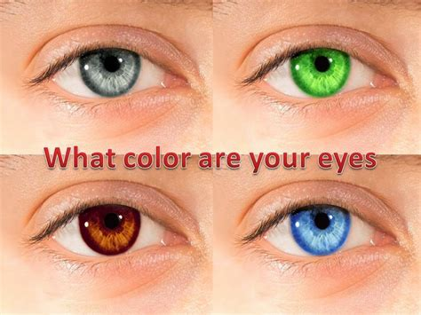 best eye color best makeup based on the eye color all what veiled