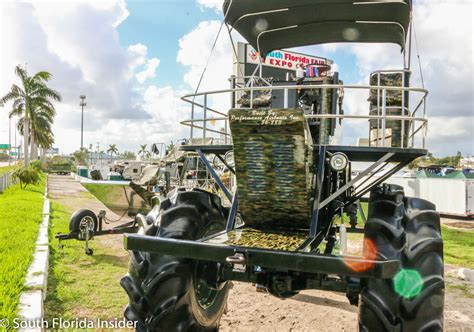 airboat show airboat sw buggy show arrives in south florida