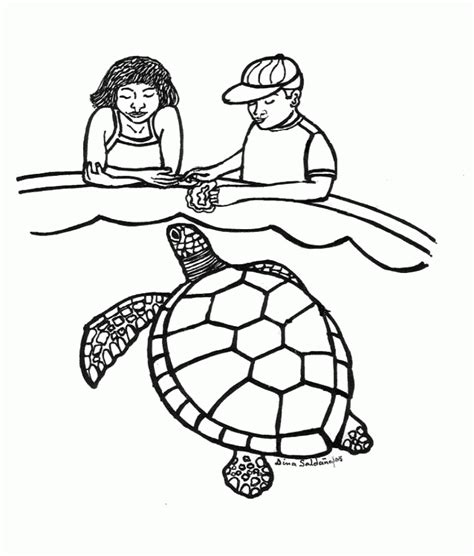 leatherback turtle coloring page cartoon pictures of sea turtles coloring home