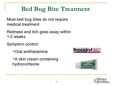 bed bugs treatment on skin bed bugs