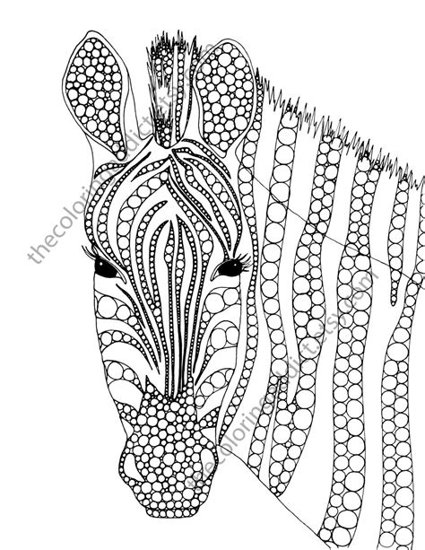 zebra pattern coloring page zebra coloring page animal coloring page by