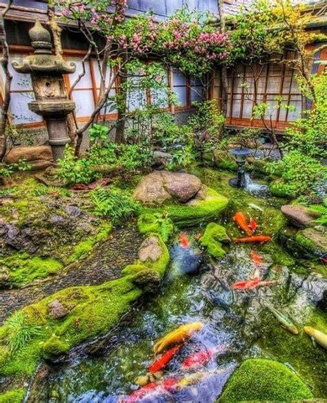 Koi Garden by 25 Best Ideas About Koi Ponds On Koi Fish