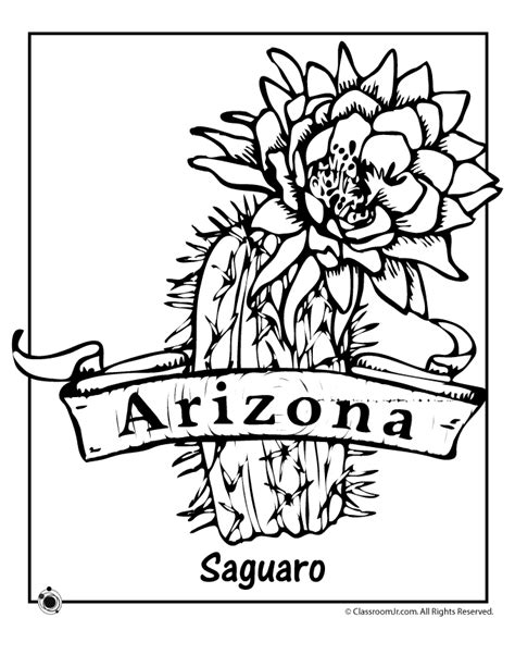 State Flower Coloring Pages Arizona State Flower Coloring Arizona Coloring Page