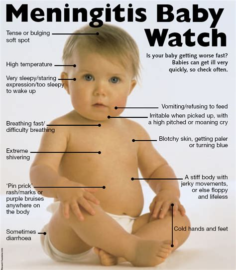 Good Home Interiors by Meningitis Awareness Week What You Should Know