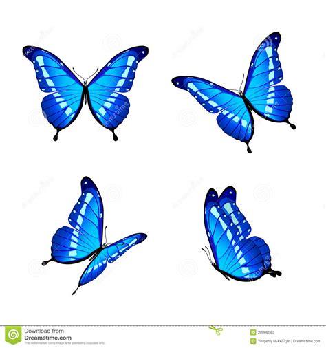 imagenes de mariposas moradas y azules mariposas azules ilustraci 243 n del vector ilustraci 243 n de