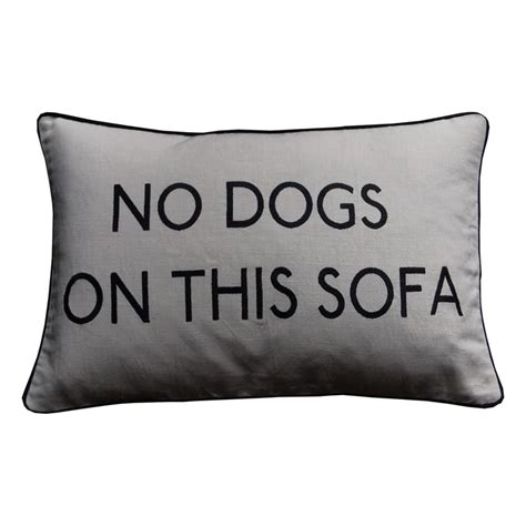 grey no dogs on this sofa cushion my style