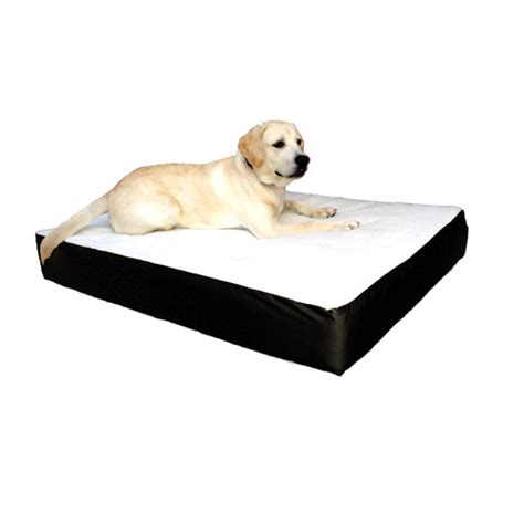 extra large orthopedic dog bed majestic pet large extra large 34x48 orthopedic double pet bed black