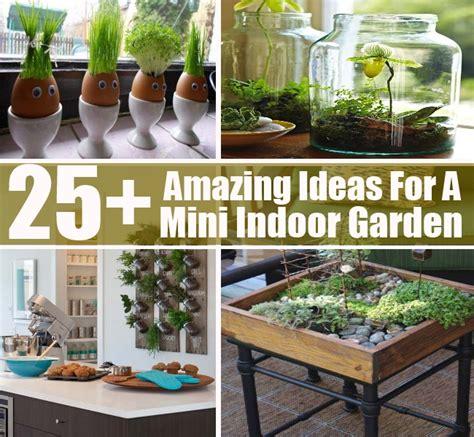25 amazing ideas for a mini indoor garden