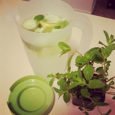 Cucumber Lemon Honey Detox Water by 18 Best Images About Water Infusion On Lemon
