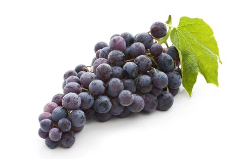 Do You To Use Organic Grapes For A Detox by The Science Of Biogenesis Grape Seed Extract Biogenesis