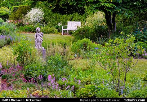Toledo Botanical Garden Picture 045 June 11 2011 From Botanical Garden Toledo Ohio