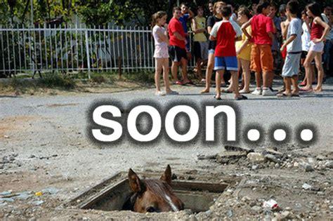 Soon Horse Meme - soon weknowmemes