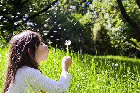 l post with blowing blowing dandelion outdoors stock image f0044567