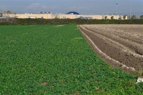 regolamento d italia la regione apre gli occhi sulla news terra dei fuochi