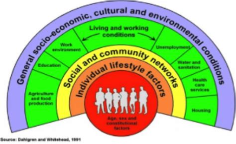 katherine johnson primary sources the complexity of health and wellbeing this week in