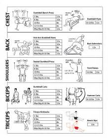 weight bench workout routine beginners weight routine jackiegettinfit