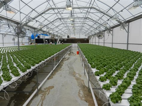 nexus greenhouse systems markets controlled