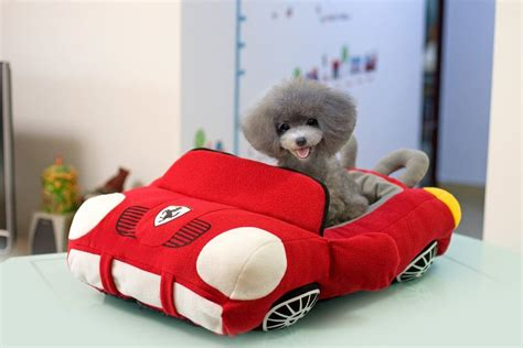 cool puppies jinpet sports cars design pet beds for small puppies